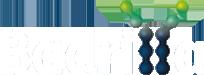 badrilla logo transparent