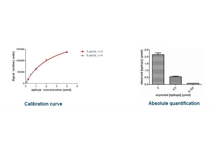 calibration curve and
